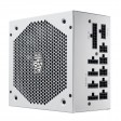 CoolerMaster 850 Watt V850 White V2 Series Fully Modular 135mm Silent FDB Fan ATX Power Supply - 80 Plus Gold Certified